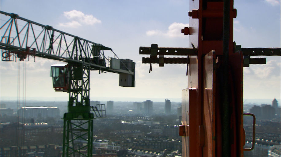 Image of cranes. A still from the short film The Solitary Life of Cranes by Eve Weber.