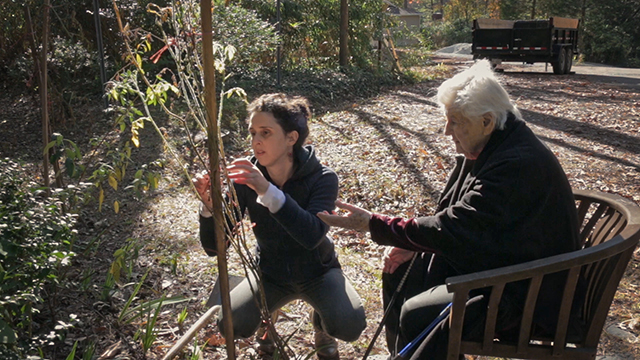 A picture of a young woman squatting down, as she ties a small fruit tree to a supportive wooden pole. Next to her sits an old lady in a wicker wooden chair; she points at the tree, as if directing the young woman.