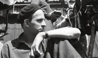 curzon_bergman_a_year_in_a_life