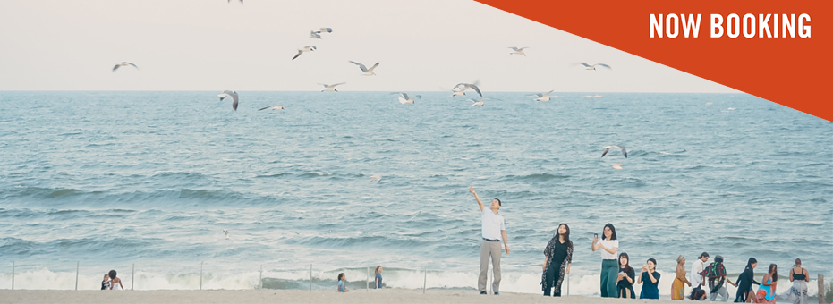 New York beach image many seagulls flying around and a crowd of people watching them from the right corner of the photo.